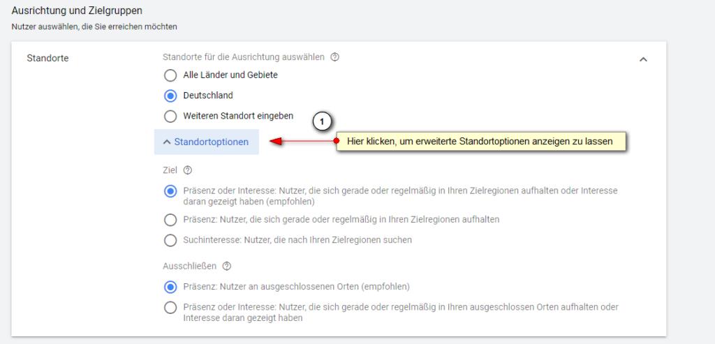 Screenshot: Google Ads Einstellungen Ausrichtung und Zielgruppen