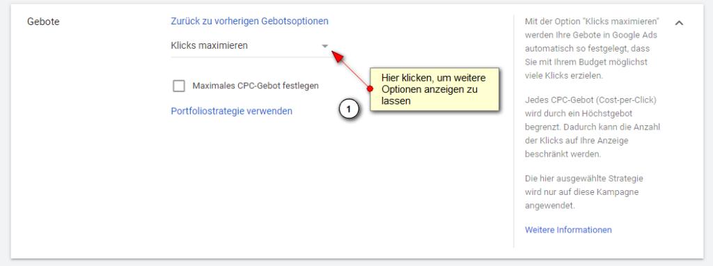 Screenshot: Google Ads Einstellungen Gebotsoptionen